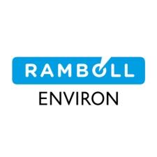 Ramboll environ logo sq 225